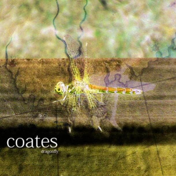 Robert Coates – Dragonfly